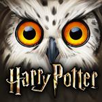HARRY POTTER Secret à Poudlard pour pc