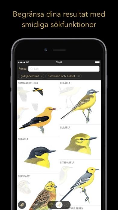 Screenshot for Fågelguiden in Sweden App Store