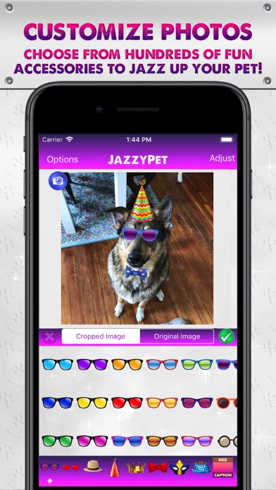 JazzyPet screenshot two