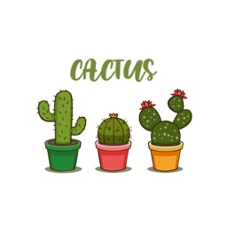 Lovely Cactus Pack Stickers