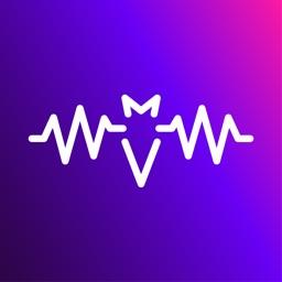 BizBat: Music Network & Gigs