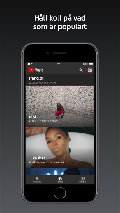 Screenshot for YouTube Music in Sweden App Store