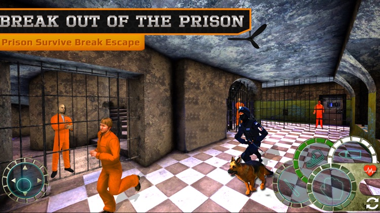 Prison Survive Break Escape