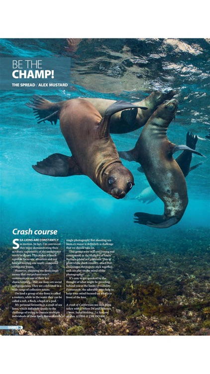 DIVER MAGAZINE screenshot-3