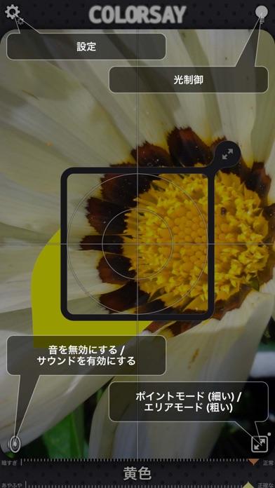 ColorSayのおすすめ画像5
