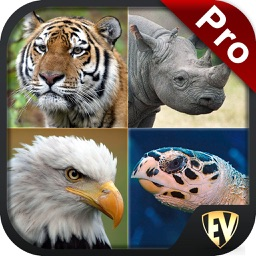 Endangered Animals PRO Guide