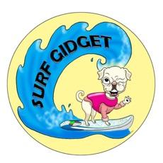 Activities of Surf Gidget the Pug