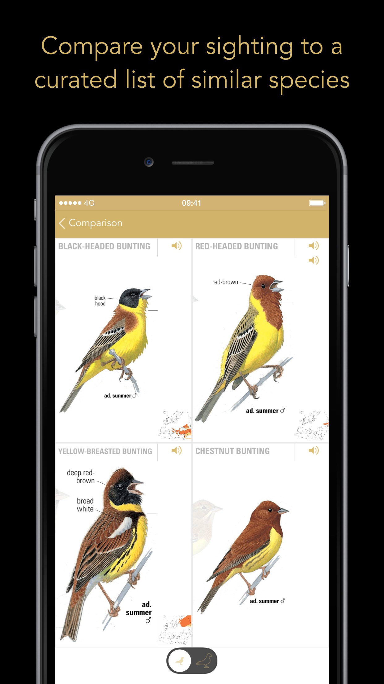 Collins Bird Guide Screenshot