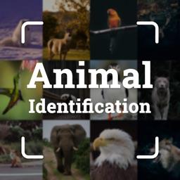 Animals ID - Animal Identifier
