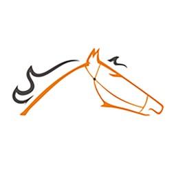 Horselogics