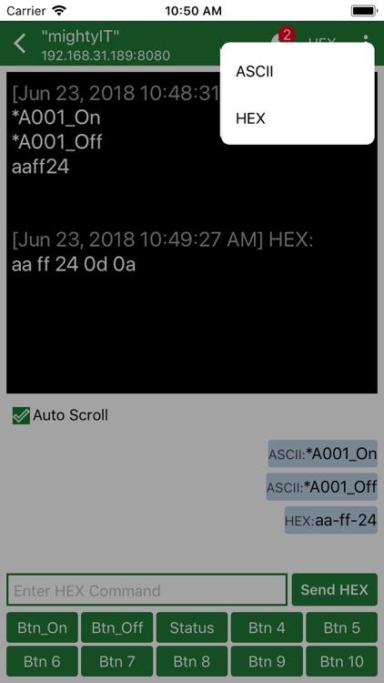 TCP Server screenshot-4