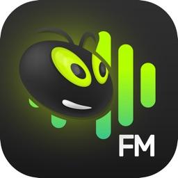 Vagalume FM