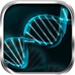 DNA Replication Biology Steps