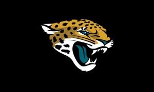 Jaguars DeskSite