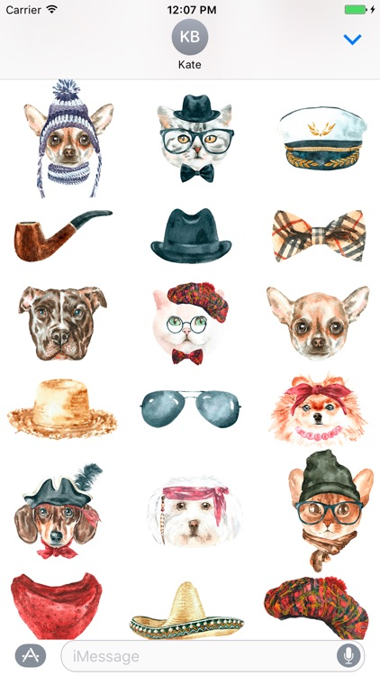 Cat & Dog Pals Emoji