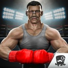 Boxing Games 2017 icon