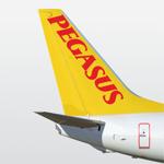 Book Flight Tickets by Pegasus на пк