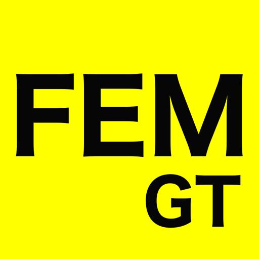 FEM GT