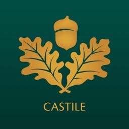 Bank of Castile Mobile