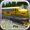 Train Sim Pro - iPadアプリ