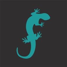 INVENTORY - Salamander