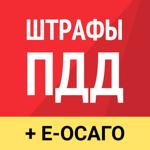 Рэй.Штрафы ПДД – ГИБДД, ГАИ на пк