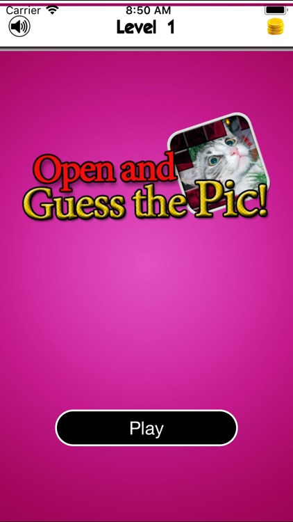 Open and Guess the Picture