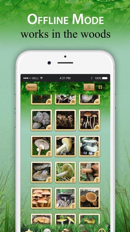 Mushroom Identification &Guide screenshot-3