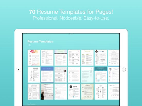 Resume Templates For Pages Bei Till Konitzer