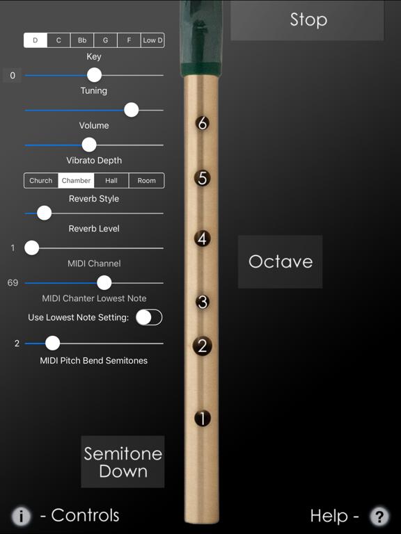 Tin Whistle Pro