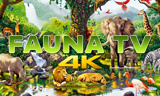 Fauna TV