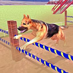 Expert Doggy Trainer Simulator