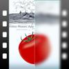 動画モザイクアプリ [plus]