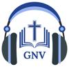 RAVINDHIRAN ANAND - Geneva Bible GNV 1599 Audio*  artwork
