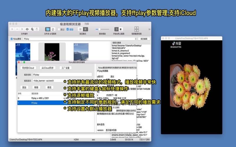 极速视频浏览器简化版 - 用截图的方式快速查找和浏览视频 for Mac