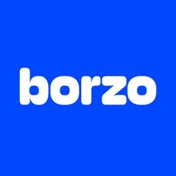 Borzo Delivery Partner App