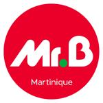 Mr-Bricolage pour pc