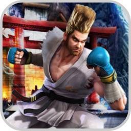 Virtual Fighting Champion