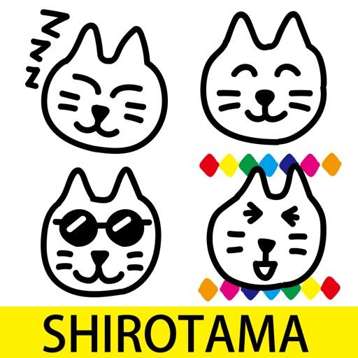 SHIROTAMA Cat 2 Sticker