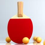 Virtual Table Tennis на пк