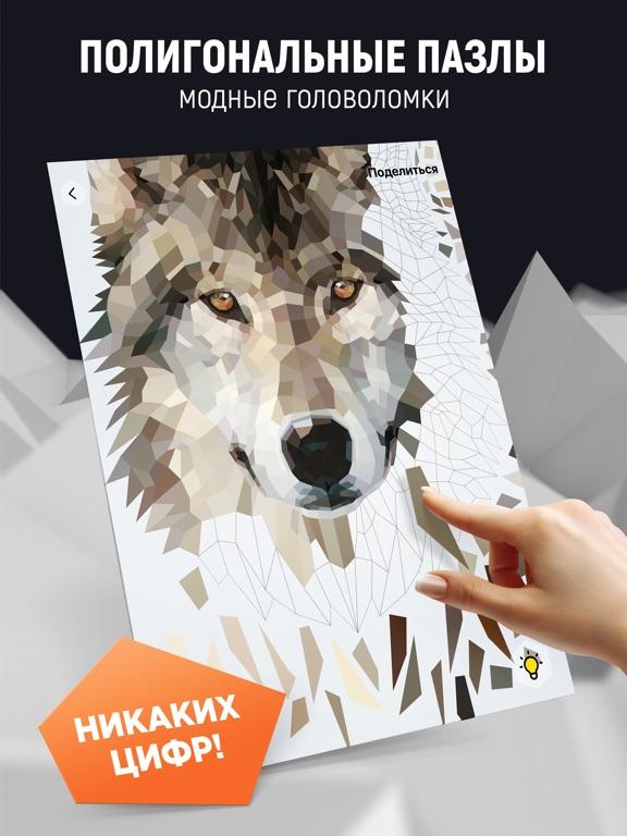 Poly Art - Арт-пазлы для игры на iPad