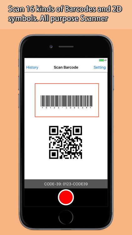 Barcode Scanner - Professional