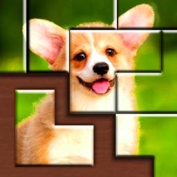 Jigsaw Puzzle Blocks