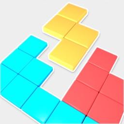 1010 Block 3D