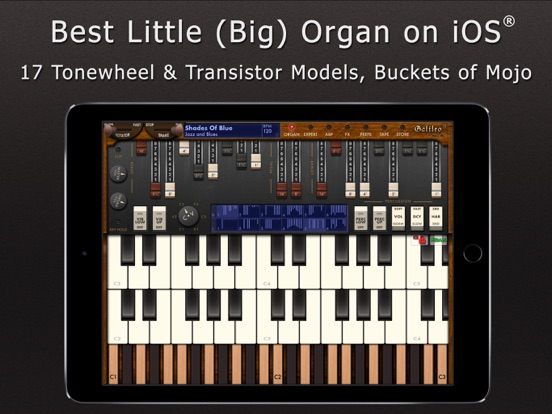Galileo Organ 2のおすすめ画像1