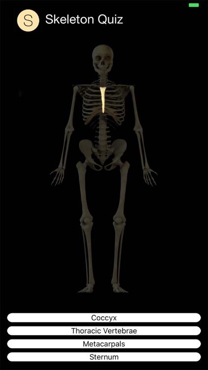 Skeleton Quiz screenshot-5