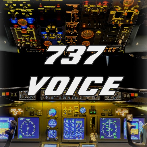 737 Voice - Aural Warnings
