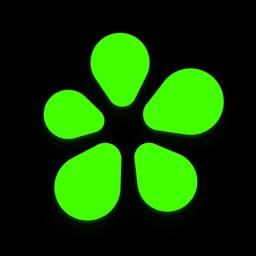 ICQ: Messenger & Video Calling
