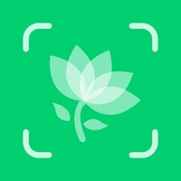 Plant Identifier - Plant ID