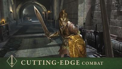 The Elder Scrolls: Blades Screenshot on iOS